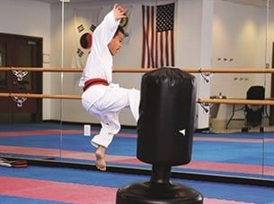 Virtual Taekwondo Classes