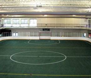 Indoor Turf